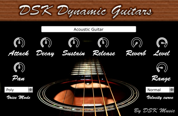 dsk dynamic guitar