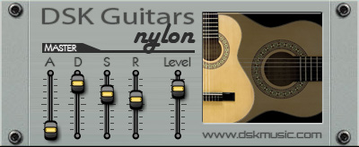 dsk guitars nylon