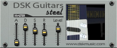 dsk guitars steel